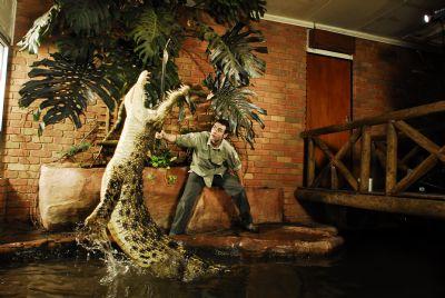 巴拉瑞特野生动物园,给你非凡的体验